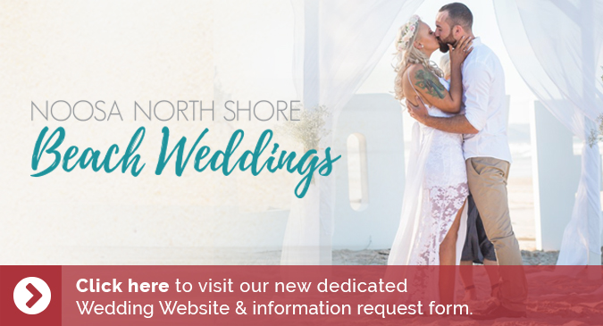 wedding-website-link
